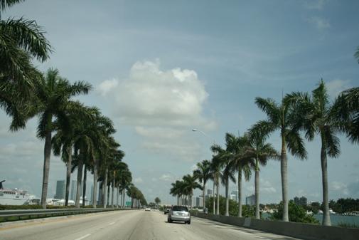 フロリダ1.jpg